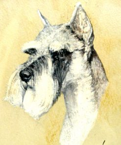 Schnauzer Dog Portrait Walter Front View- Dog's Tale Collectibles
